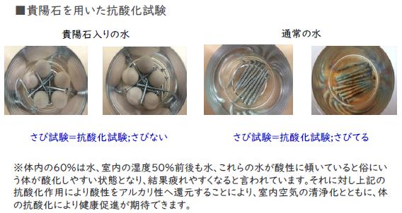 貴陽石 抗酸化試験